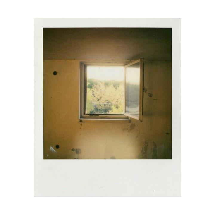 Película Color 600 - Danny Pemberton