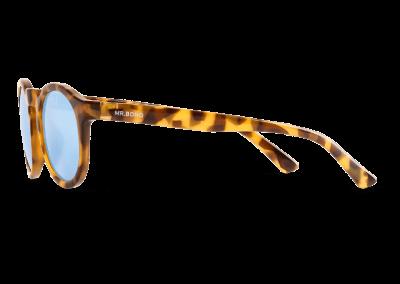 Gafas High Contrast Tortoise Jordaan