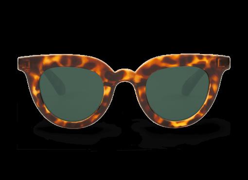 Gafas Cheetah Tortoise Hayes